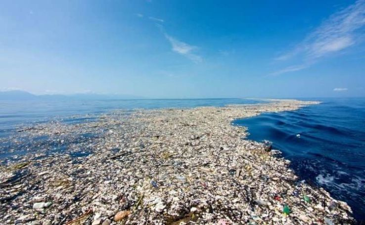 Great Pacific Garbage Patch.jpg